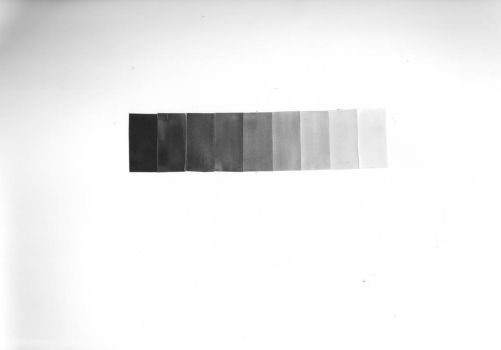 india ink value scale by MjjSkully