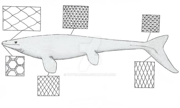 A Guide to Mosasaur Scales by Yutyrannus