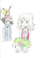 Amour- We missed you Shaymin by Pikafan09