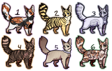 [CLOSED] incorrect warrior cat adopts by uks-income