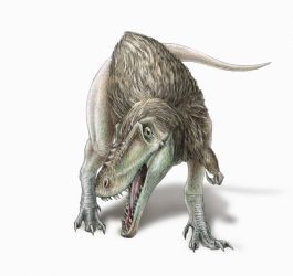 Alioramus remotus - feathered version by FOSSIL1991