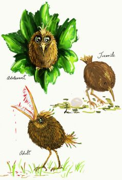 Lifecycle of a Kiwifruit Bird by somnambule