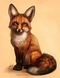 Little Fox (+video) by Lhuin