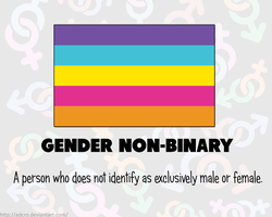RAINBOW FLAGS: Gender Non-Binary by Adcro