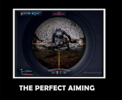The Perfect Aiming by chriscastielredy
