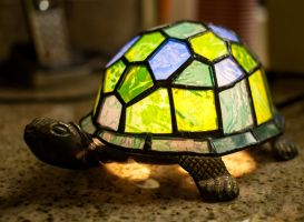 Turtle Lamp by lupiniastudios