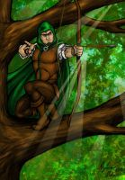 Robin Hood by SilverKitty000