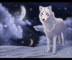 Snow Wolf by akeli
