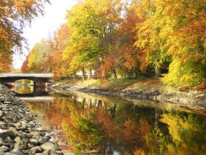 Autumn reflections by Lingha