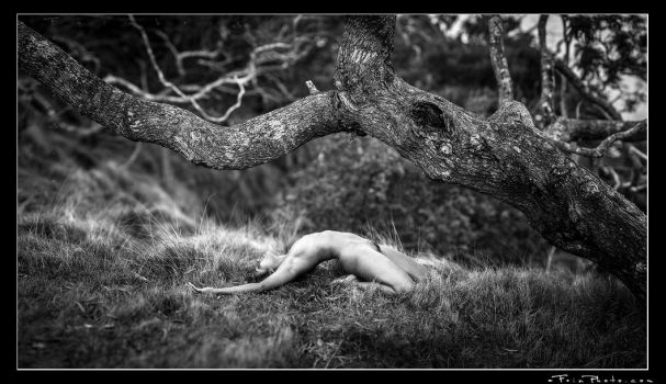 Merrique Under Branch by aFeinNude