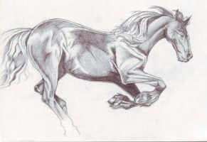 Horse2 by FATRATKING