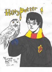 Harry with Hedwig by Harry-x-Cedric