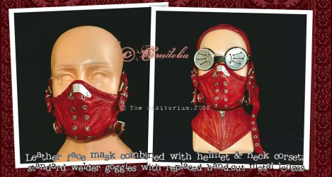 Face Mask-Combined by crudelia