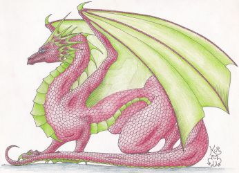 Red dragon by Scellanis