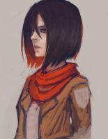 practice with mikasa by lllannah