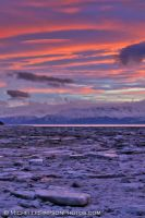 Purple Ice by MSimpsonPhotos