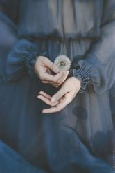 The seeds of wind by NataliaDrepina