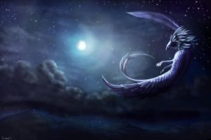 Fly in the night sky by Sirmaril