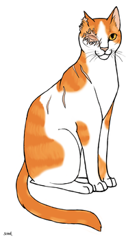 Brightheart by Scink