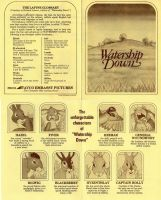 Watership Down booklet by Rabbette