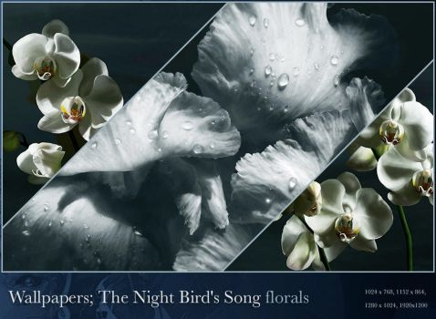 The Night Bird's Florals - wp by wroth