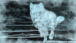 Ice Wolf by Crescentmoon19