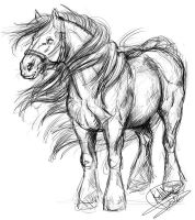 cheval de trait by Xx-tatooz-xX