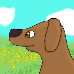 Beloved Dog Grants a Smile by IttyBitty1996