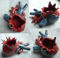 Heart Burst Multi-View by OllyChimera