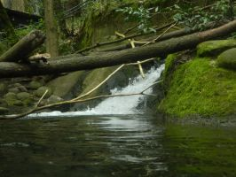 Small waterfall by GorgeousWreck