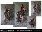 Post Apocalypse Pack 12 by mizzd-stock