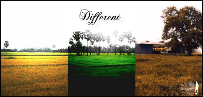 Different by weerachot