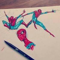 Spidey doodles by COLOR-REAPER