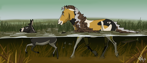 Summer 2014 Objective | The Outland Marsh by MariahWhy