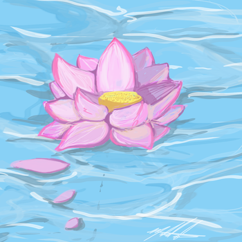 Lotus by SparkyPantsMcGee