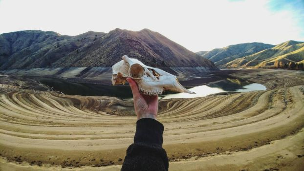 Finding Skulls in Scenic Places  by kazscreations
