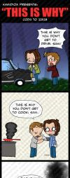 This Is Why (spoilerish, but not really) by KamiDiox