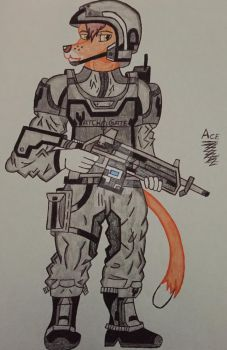 WatchGate Secuirty Trooper by acebird1234