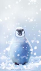Penguin by acory
