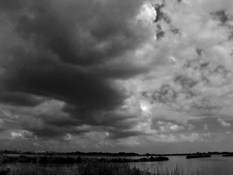 STORM FRONT BW San Jac Wetlands 9.24.07 SH103229 by CorazondeDios
