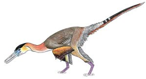 Buitreraptor by PaleoAeolos