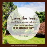 Inspirational Nature Quote by mayatownsend