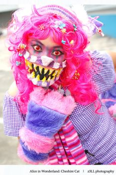 Alice in Wndrlnd: Cheshire Cat by z3LLLL