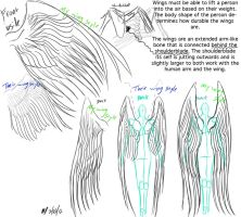Wings anatomy and reference by EmbraceDarkshade