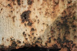 Rust-Stock4 by Stock-Tography