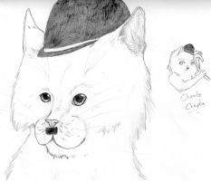 Charlie Chaplin Cat by nightwindwolf95