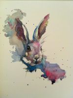 Image hare in watercolour by sarahstokes