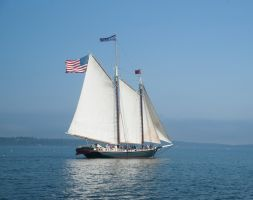 Maine Sail 2 by archistock