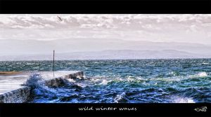 wild winter waves... by archonGX