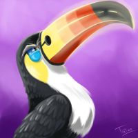 Toucannon Pokemon Sun Pokemon Moon
